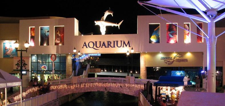 Acuario Interactivo de Cancún