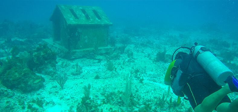 Museo Subacuático de Arte de Cancún (MUSA)