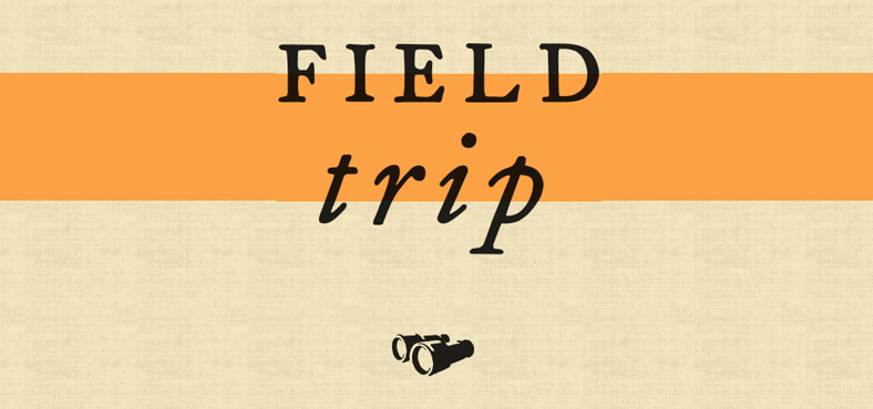 Field Trip: explora y conoce más