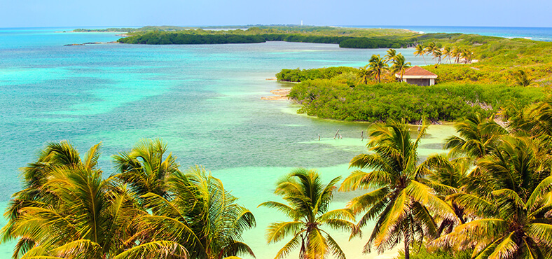 Adéntrate al paraíso natural.