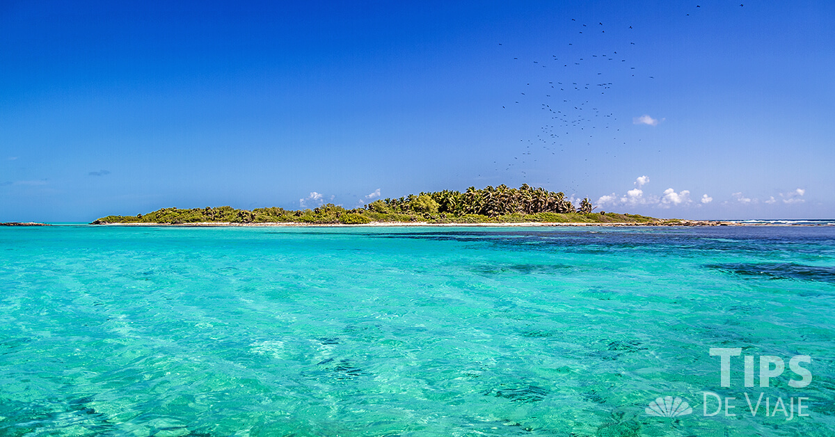 Enamórate de la belleza y actividades de Isla Contoy en Cancún.